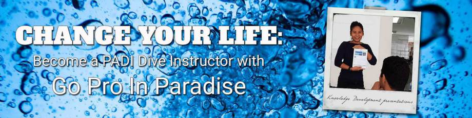 PADI IDC Phuket, Thailand, Platinum Course Director - SCUBA Diving Instructor Courses in Indonesia