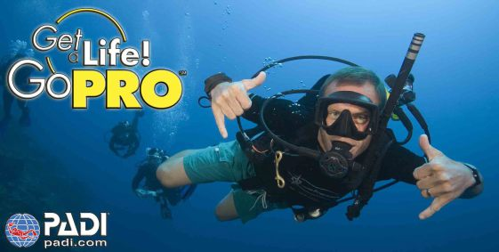 PADI Divemaster Internship, Phuket, Thailand, All 4 Diving